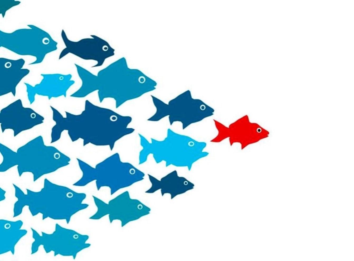Giải mã nhà lãnh đạo: Phương pháp quản trị Nhân sự Bất động sản hiệu quả